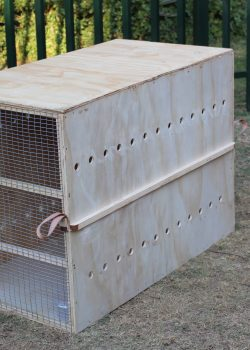 wooden-dog-cage